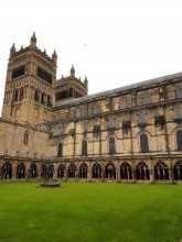 Timber survey of Durham Cathedral Cloisters
