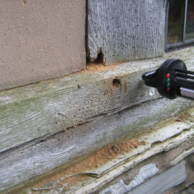 Microdrill to detect concealed decay damage